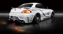 Custom: BMW Z4 White Wolf