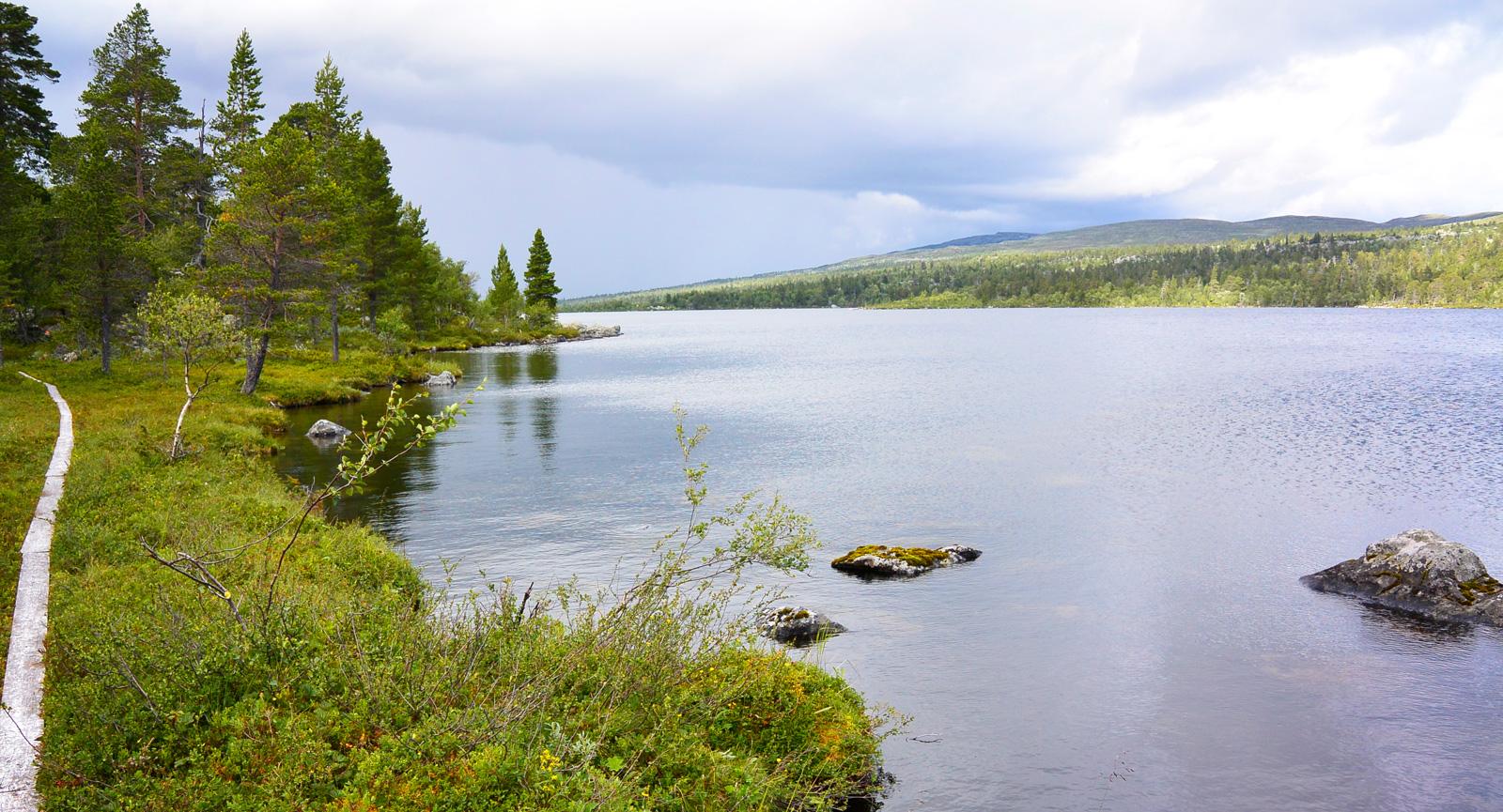 Många små och större sjöar ligger invid vandringslederna kring Grövelsjön.