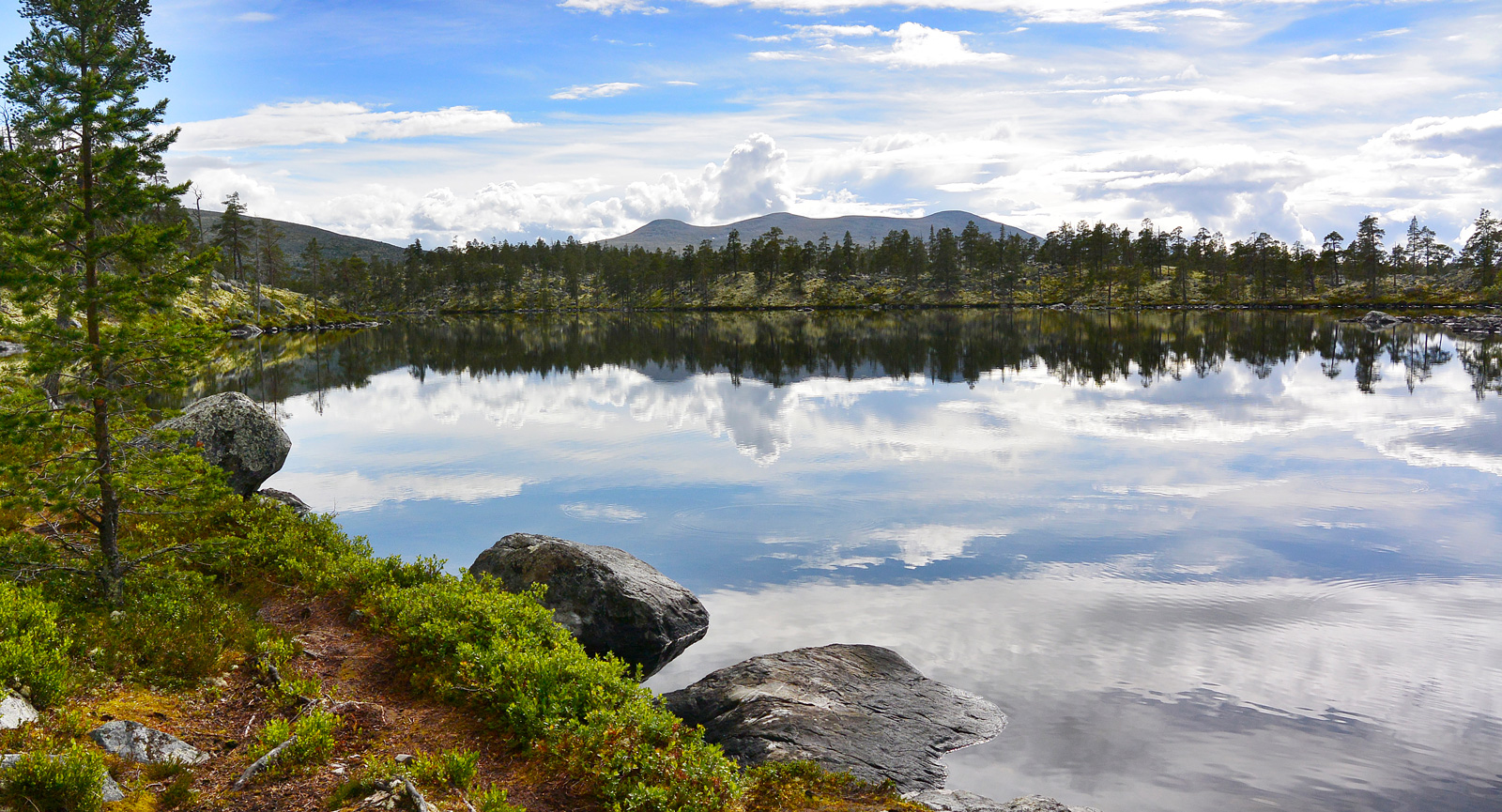 Skog, spegelblanka sjöar och fjäll i fjärran. Det är vandring vid Grövelsjön det!