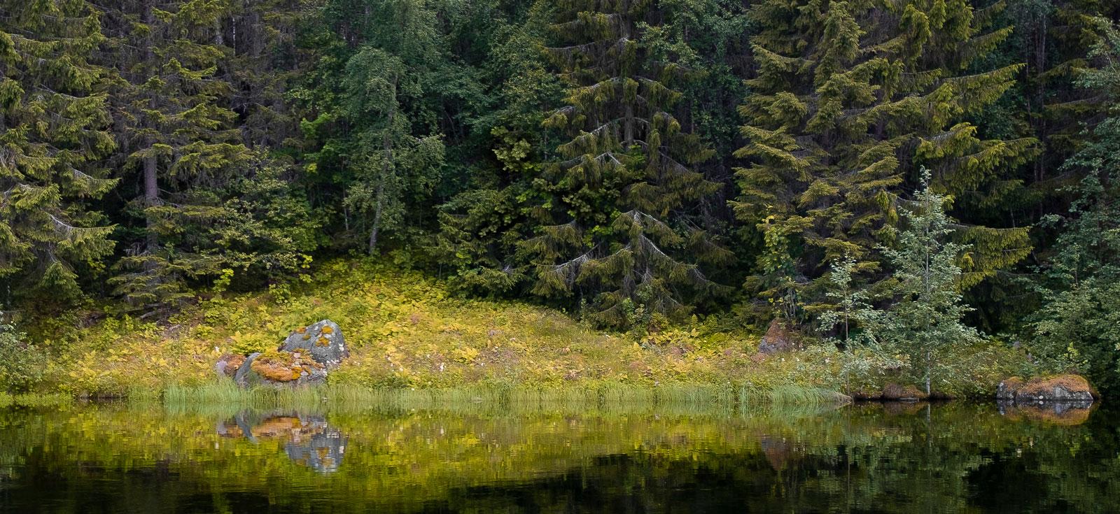 Lugnet, tystnaden och orörd natur. Goda anledningar att bege sig iväg ut.