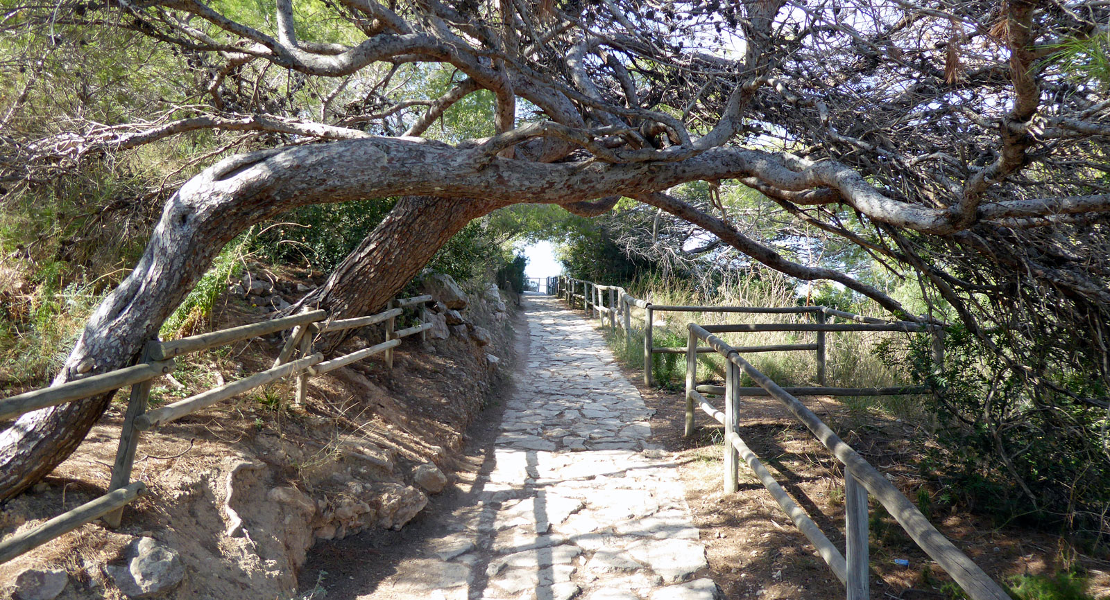 Den första etappen av vandringen uppför den 332meter höga klippan går på en stensatt stig.