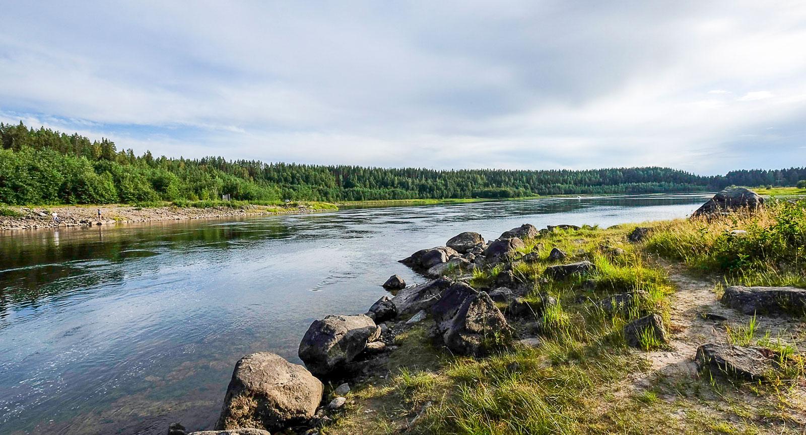 Pite älv forsar oavbrutet nedströms för att nå Bottenviken.