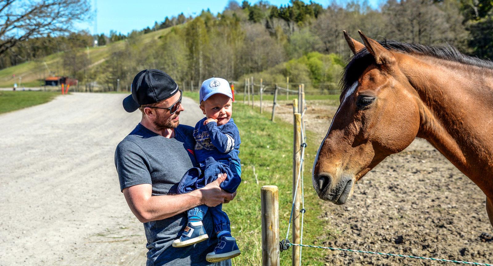 Hästhagen är särskilt fascinerande för barnen.