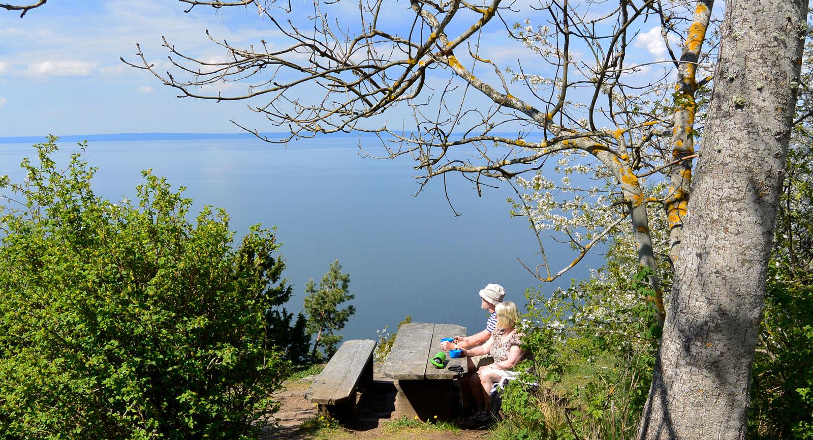 Vid detta rastbord, beläget precis invid Norra Sjövägen, sitter man inte i sjön. Bara nästan.