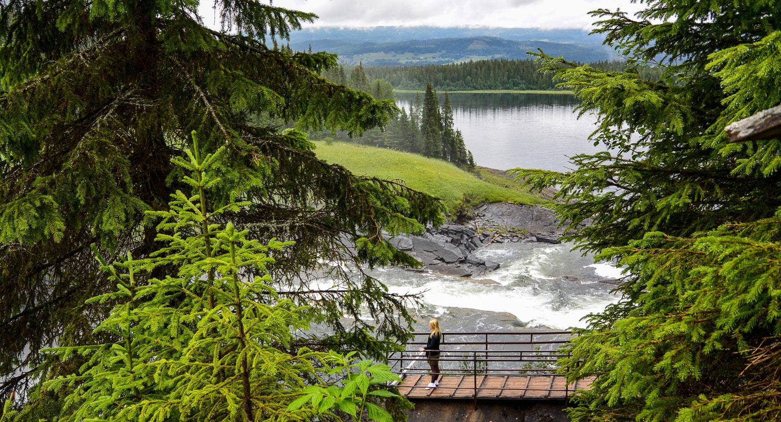 Det är inte bara vattenfallet som fascinerar, fjällnaturen runtomkring är mycket vacker.