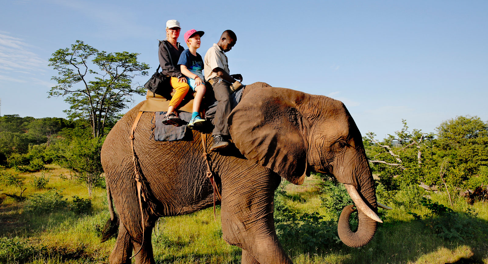 Det blir många äventyrliga inslag för familjen och mankhöjden på en elefant är inget för ryttare med höjdrädsla.