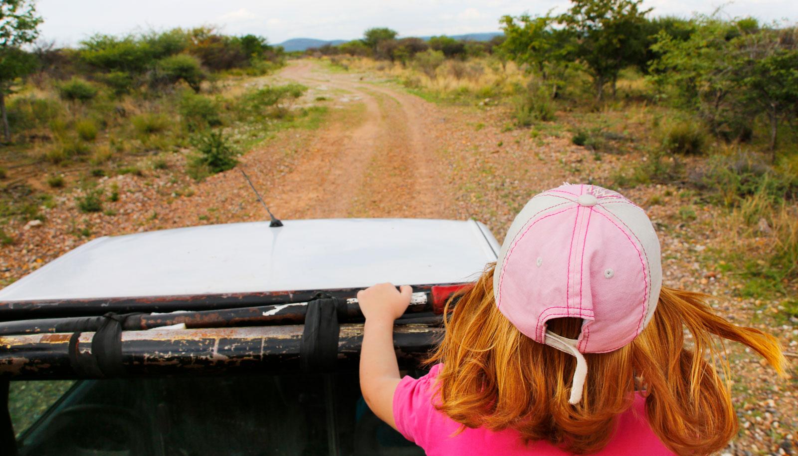 """På spaning efter geparder """"The African way"""" – med utmärkt utsikt från ett pickupflak."""