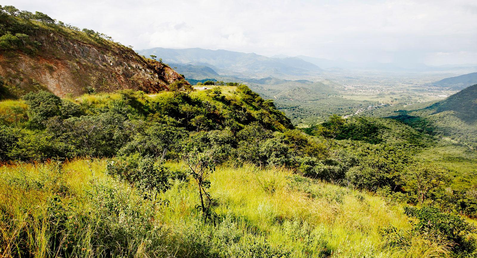 Bvumba Mountains, ett måste för oss som älskar att vandra.