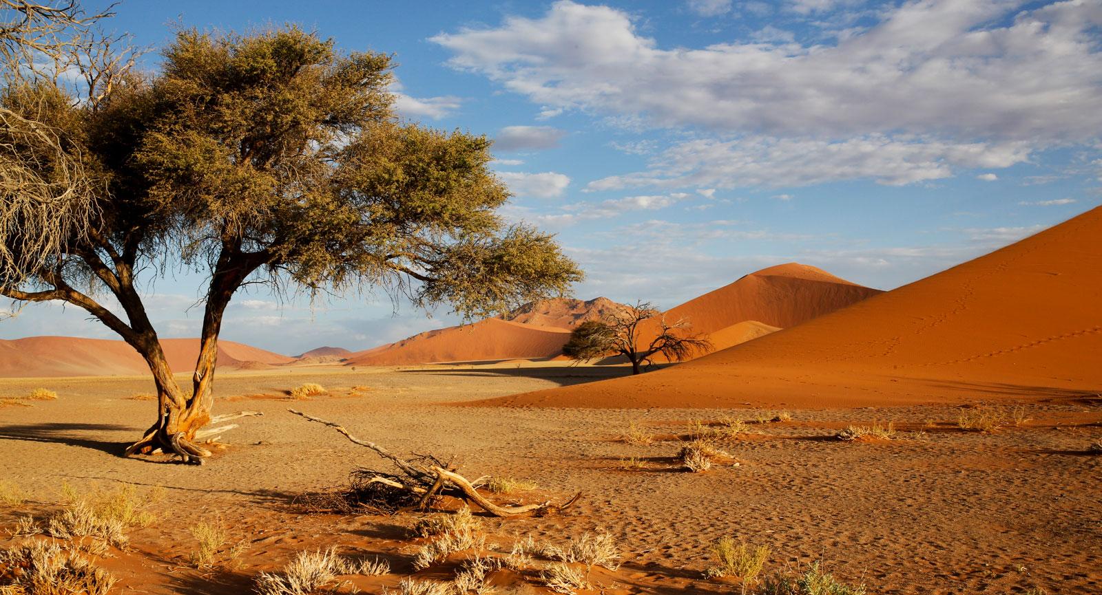 Enorma hav av sand och salt i den uttorkade sjön Sossusvlei i den södra delen av Namiböknen.
