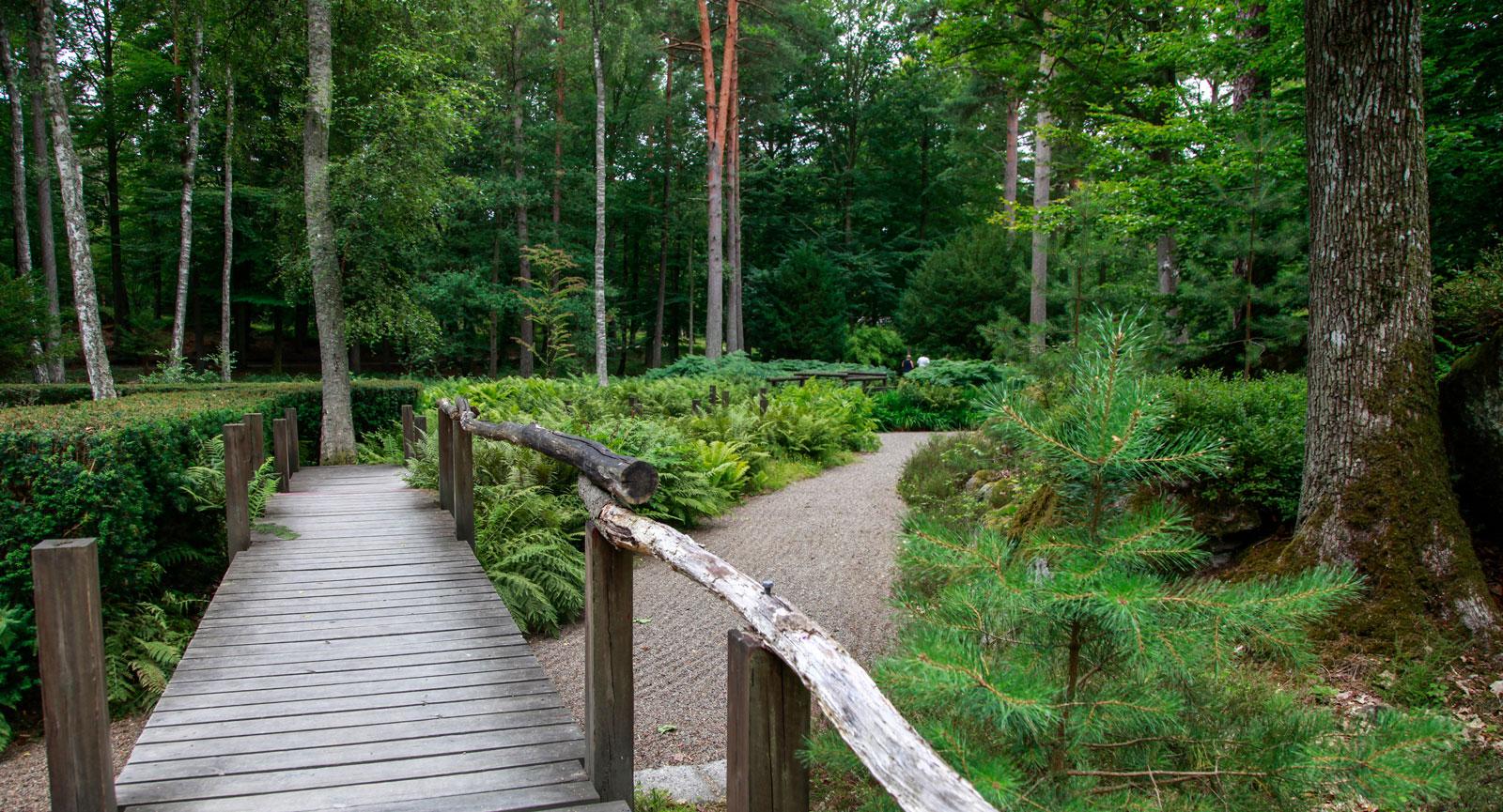 Japanska trädgården är lugn och fridfull mitt i skogen.