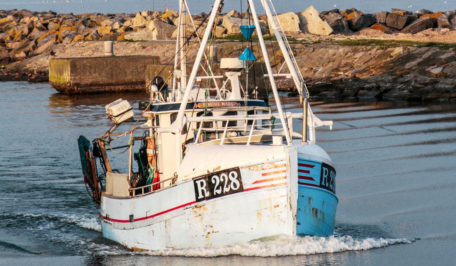 Det finns flera yrkesfiskare på ön, som ser till att öns restauranger kan servera mat med lokal prägel.