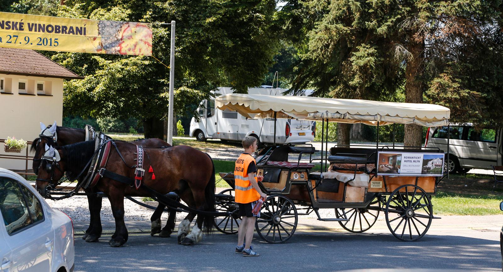 Den som inte vill gå själv upp till Karlstejn slott kan åka i vagn.