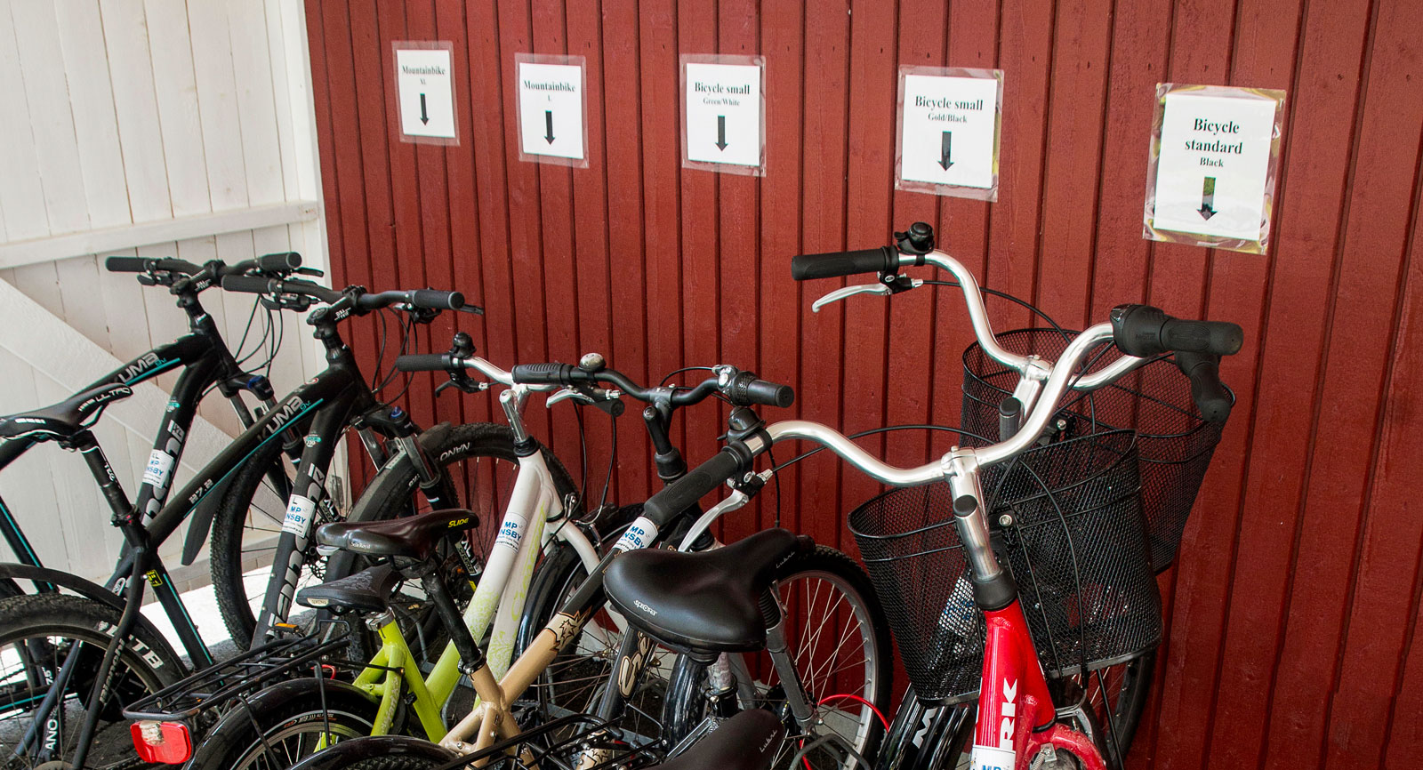 Cyklar finns att hyra för utfärder på vindlande skogsvägar.