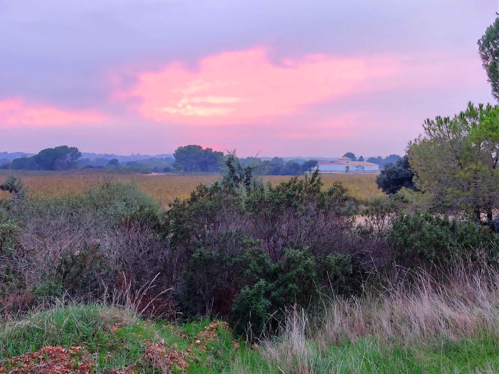 Nu längtar vi efter fast mark och sköna miljöer en bit in i landet.