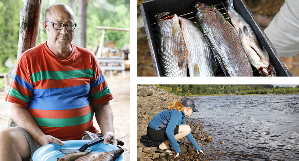 Vid ett vindskydd i Dalarna träffar vi Kari som fiskat harr utanför Kiruna i sex veckor och nu är på väg söderut. Givetvis bjuder han på nyrökt fisk. Det är socialt att söka sig utanför campingplatserna. || I naturen frodas kreativiteten och barnen hittar nya saker att upptäcka.