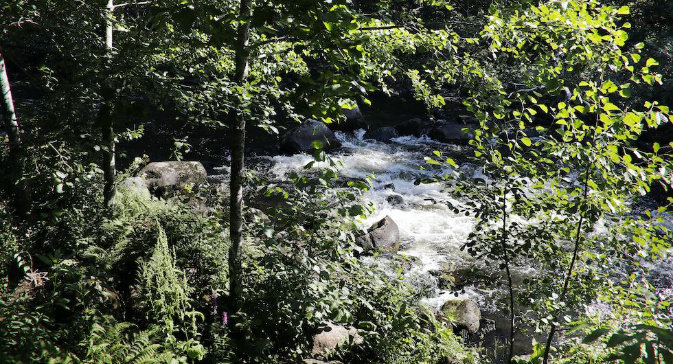 Vid det ursprungliga vattenfallet och den trånga forsen uppfördes Trångfors första smedja redan år 1628.