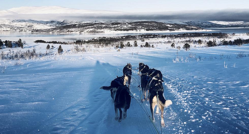 Häftigare än så här kan det knappast bli. Rimfrost, sol och en ångande fjord.