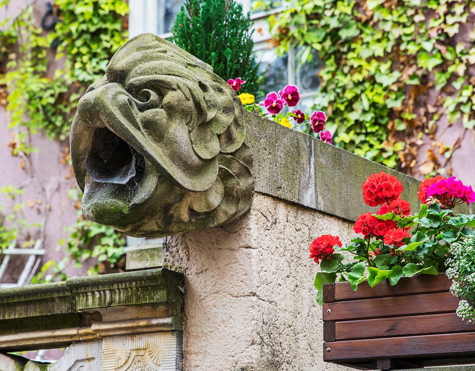 Så kallade gargoyles (vattenkastare) finns det gott om på Ulica Mariacka i Gdańsk.