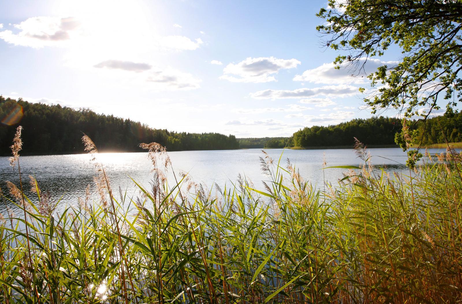Tindered Lantkök ligger vackert vid sjön Ommen.