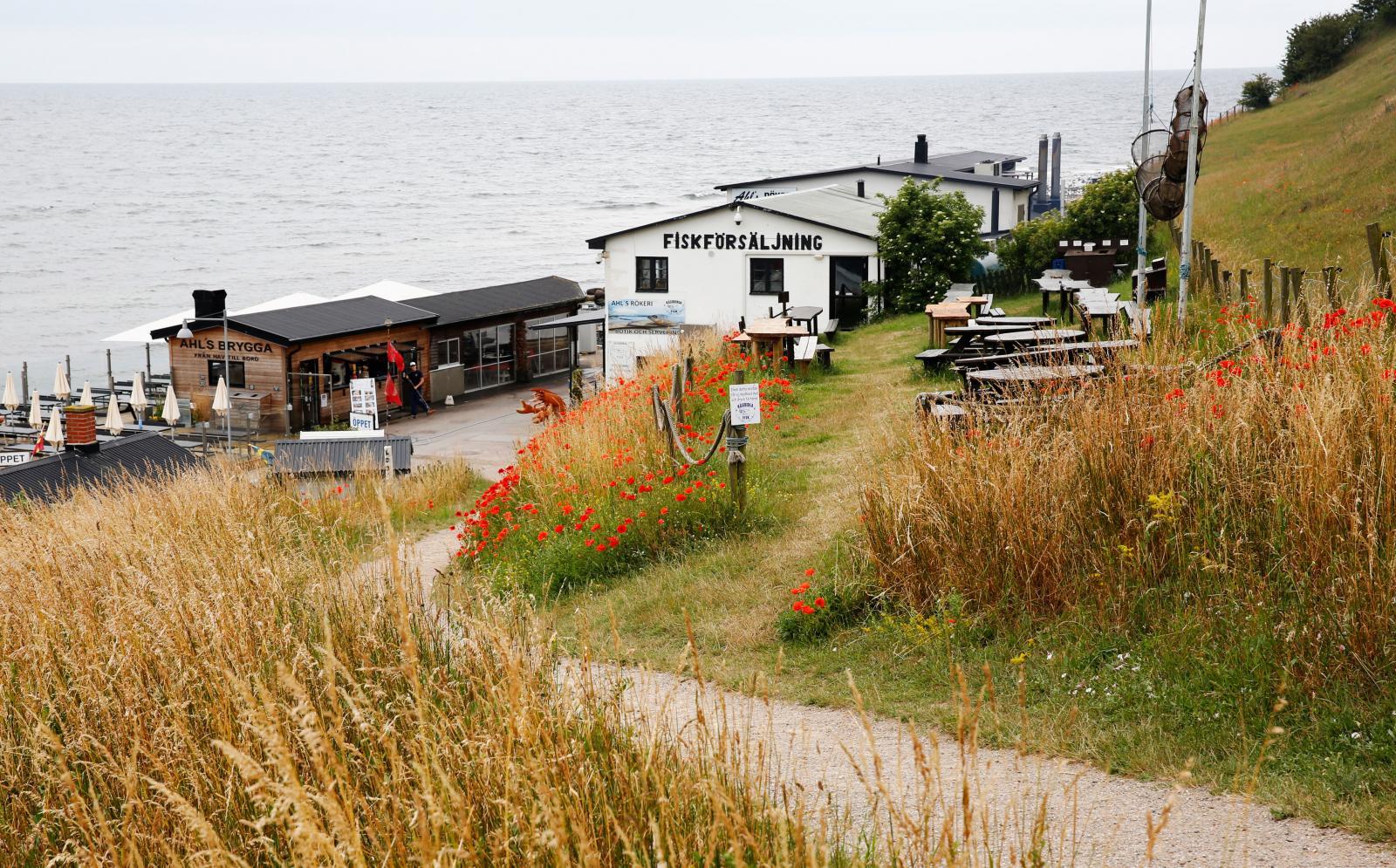 Hamnen i Kåseberga. Här finns glasskiosk, kafé och restauranger.