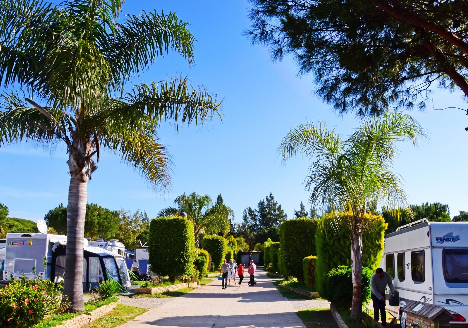 Campar gör man bäst i grannorten Puerto de SantaMaria.