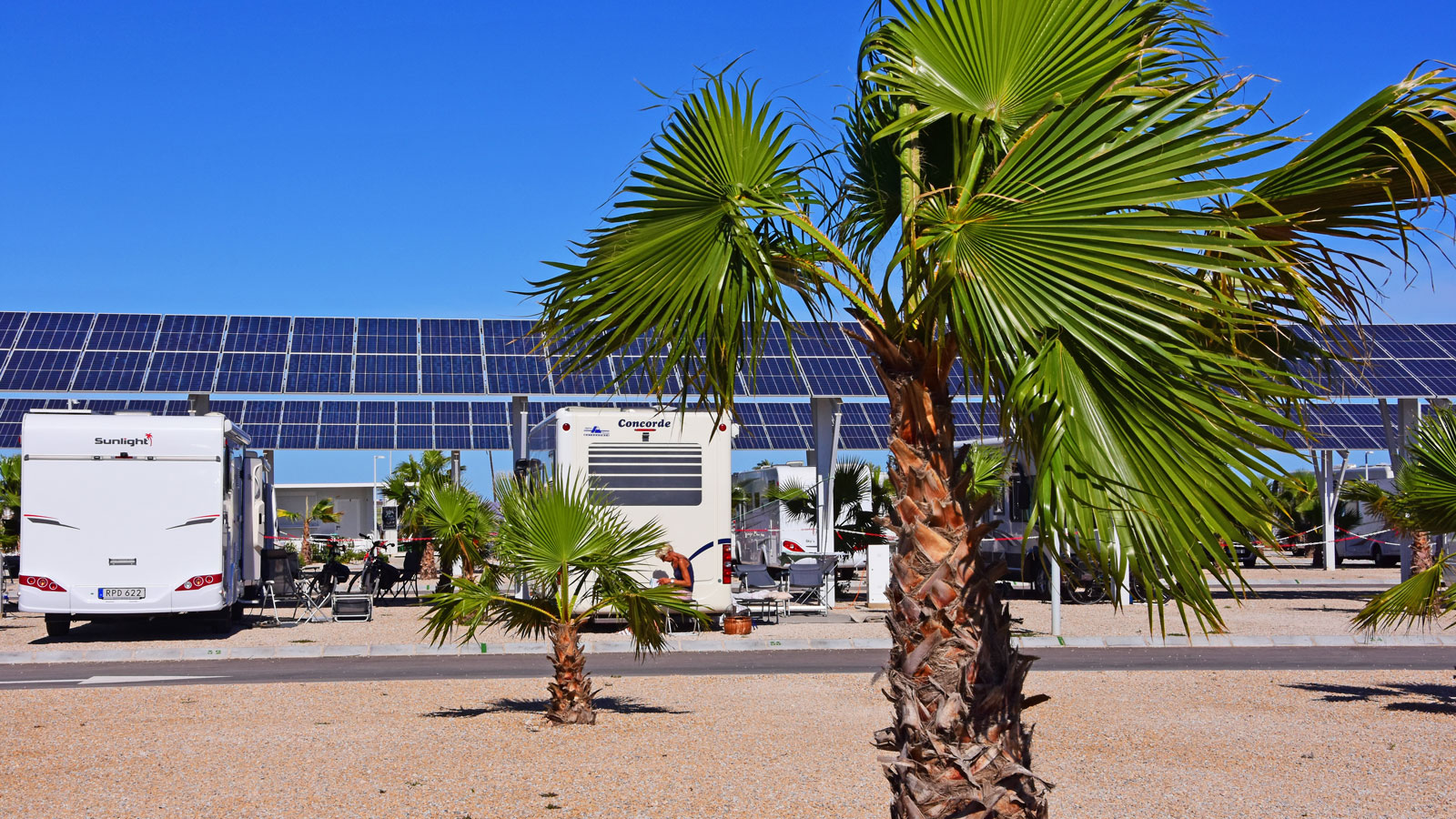 Solpaneler ger skugga och energi till hela ställplatsen.