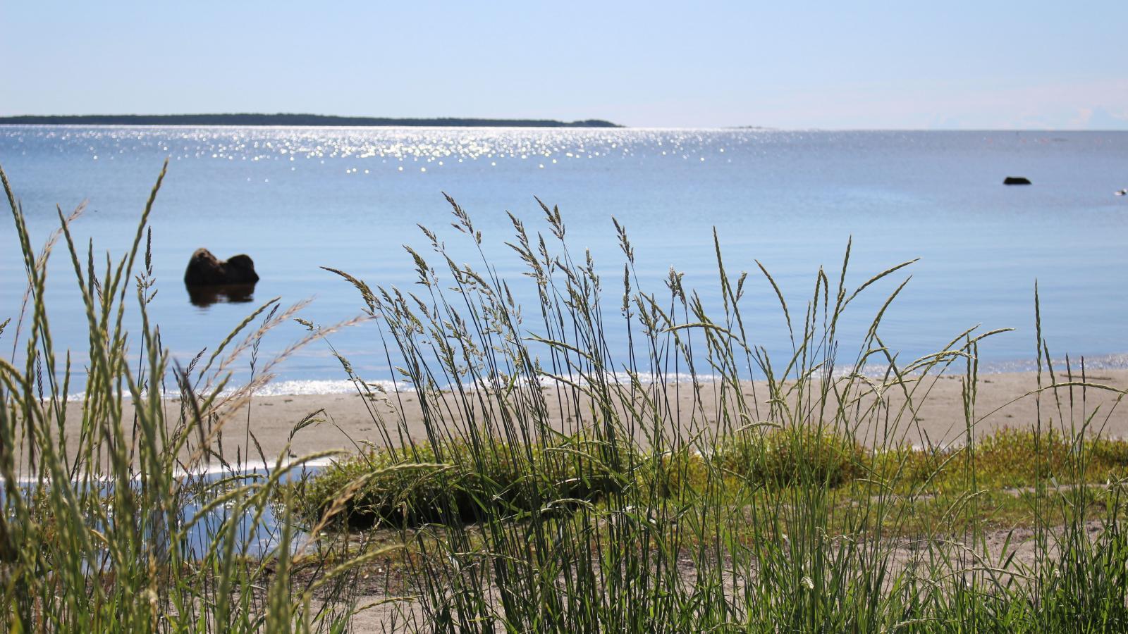 Koffsand ligger bara en kort promenad bort från Mellanfjärdens Camping och gästhamn.