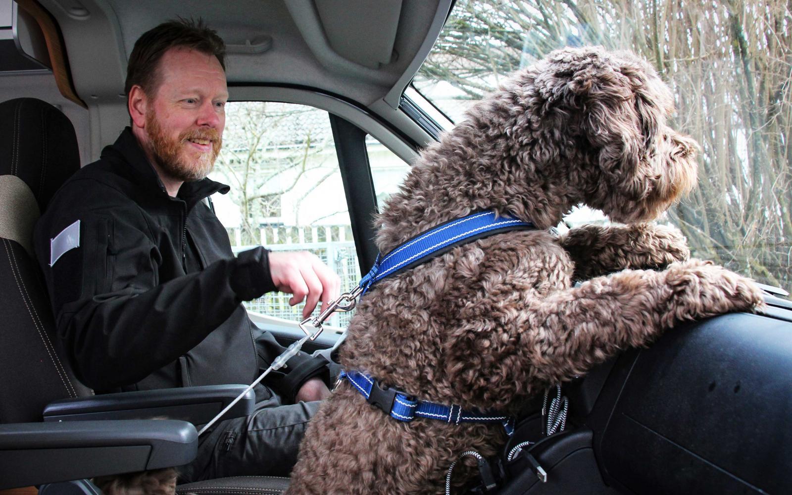 När husbilen står stilla kan en längre vajer användas, så att hundarna får större ytor att röra sig på.