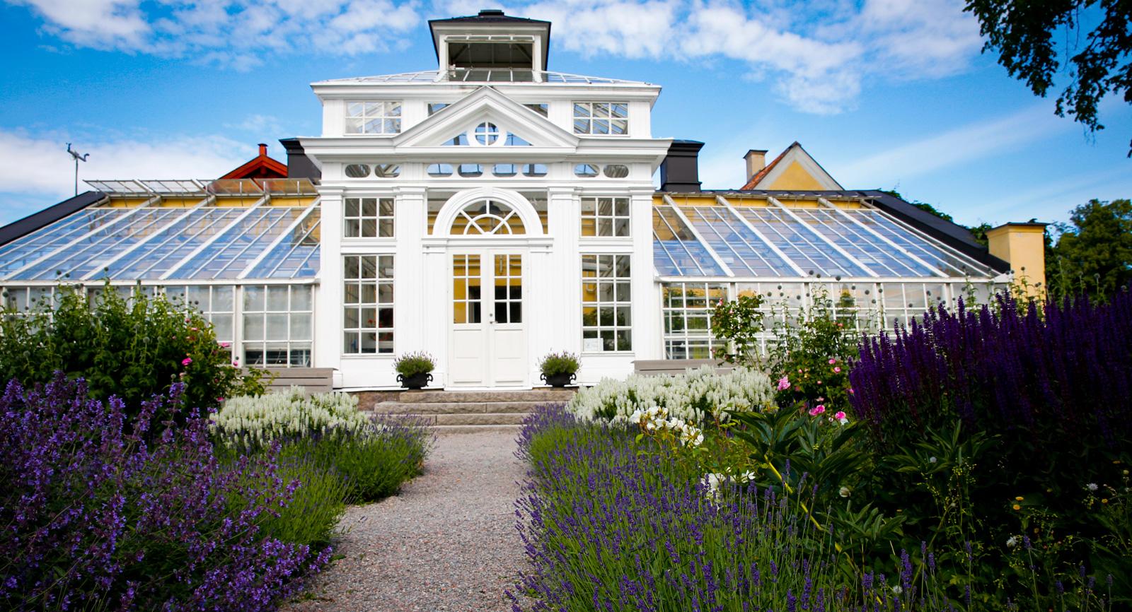 Ett hav av blommor kring orangeriet vid Gripsholms slott.