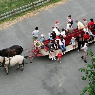 Turlistan till Visingsö corona-anpassas