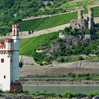 Restips: En tysk vin och slottstur
