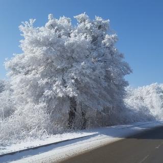 Lagförslag om vinterdäck på tung husbil