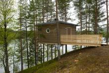 På campingplatsen Granö Beckasin finns fågelnästen högt uppe i tallarna.
