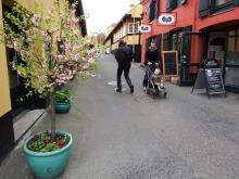 Restips: Exotiska Bornholm