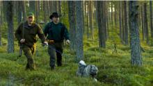 Restips: Naturnära Granö Beckasin
