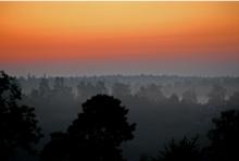 Utnyttja gryningens ljus. Över sjöar ligger ofta morgondimman som kan ge spännande resultat eller som här över en skog.