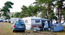 Gunte och Gun (och hunden Kotten) har bott längst på Oknö med sina 31 somrar på samma plats.