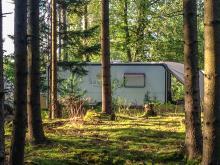 Platserna är stora och många ligger inbäddade i trollskogen.