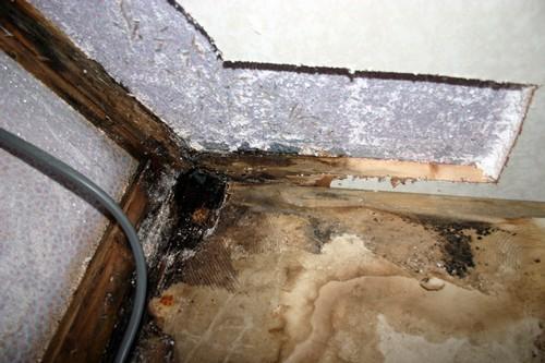 reparera golv i husvagn