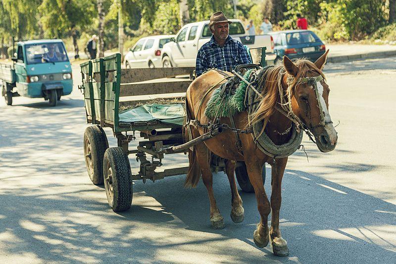 Häst och vagn är fortfarande ett vanligt transportmedel och det gäller även större vägar. Bildcred: Wikimedia / anonymouse1