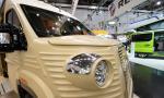 BILDSPEL: Citroën Typ H WildCamp
