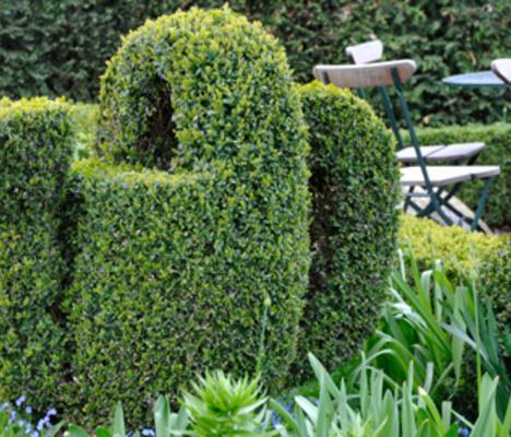 Trädgårdsmässor under 2012