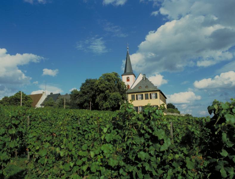 Vin och motion i Tyskland