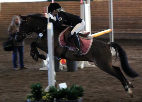Ponnyhoppning i Borås