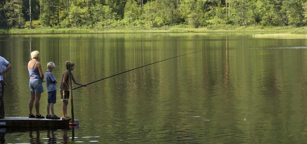 Enklare fiske i Småland
