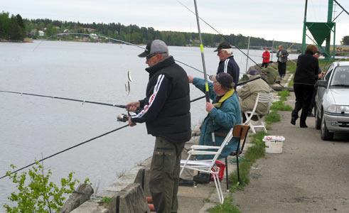 Stugsund ska locka fiskare