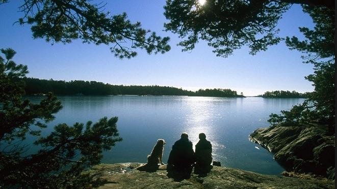 Restips: Vilthägn och viltrestaurang i Sörmland