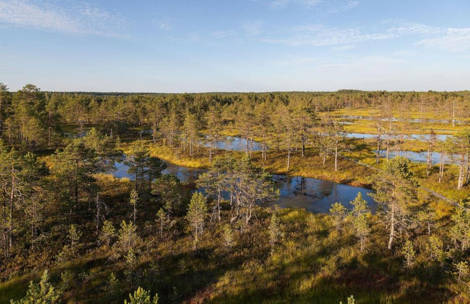 Restips: Lahemaa nationalpark