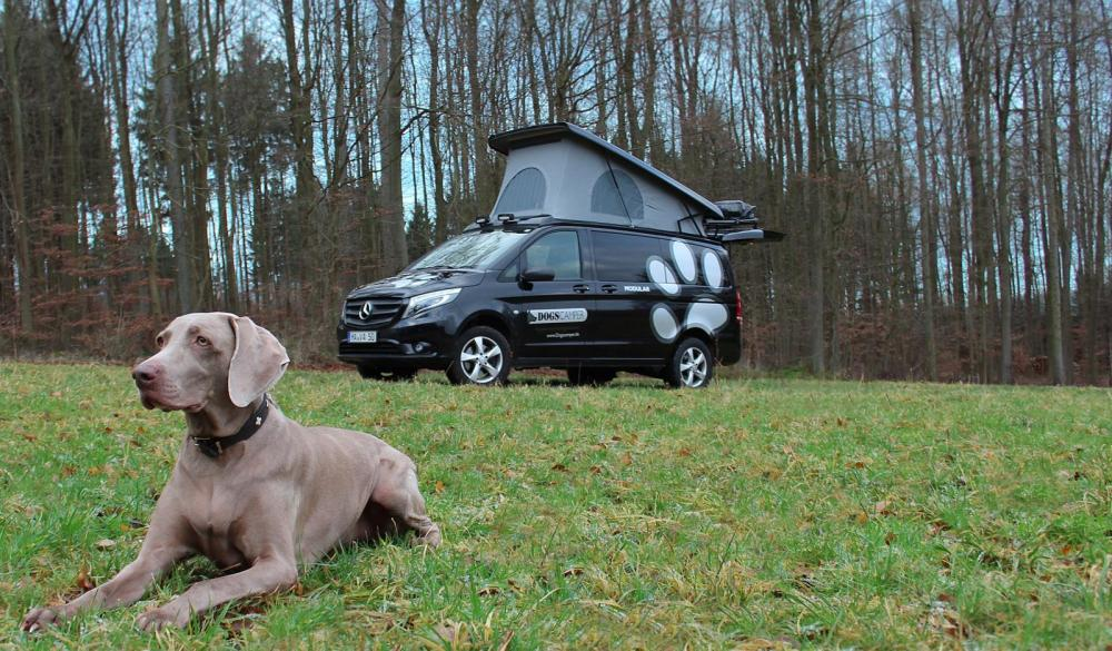 Husbilen för hundägaren