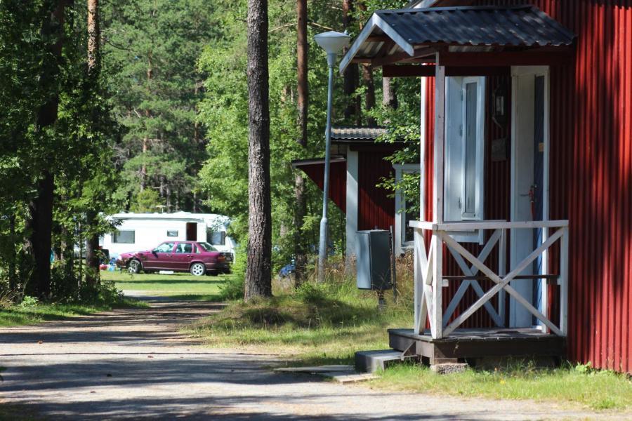 Naturcamping satsar på skogsplatser